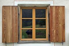 Holzfenster14